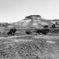 Image: large hill with small bushes in foreground
