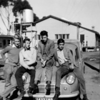 Image: four young men sitting on bonnet of car, buildings in background